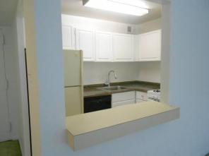 1br -1 BEDROOM APARTMENT/CONDO FOR RENT